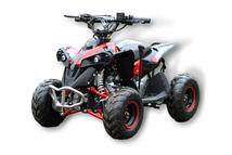 110cc Renegade ATV 3C